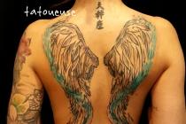 ailes dos